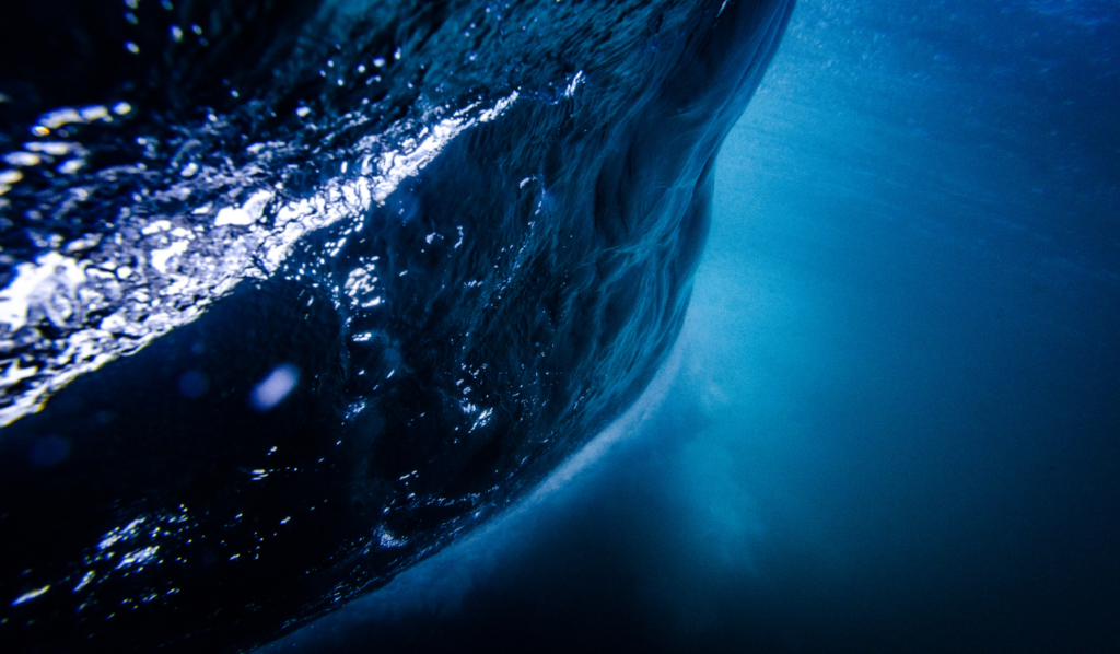 IWA Digital World Water Congress